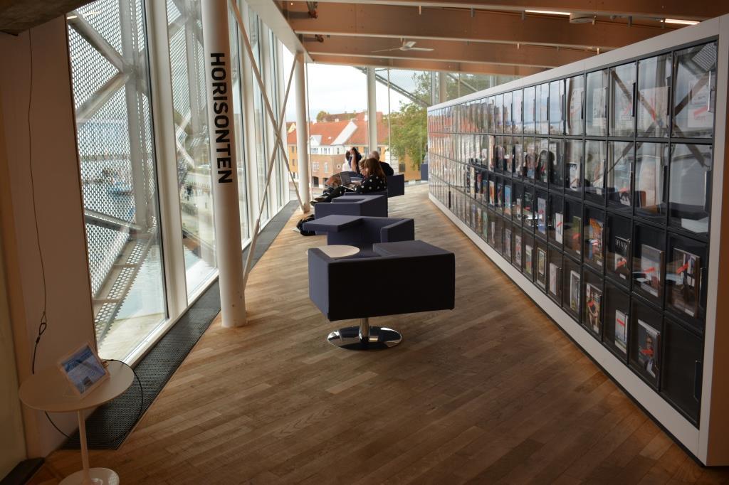 Хельсингер, библиотека